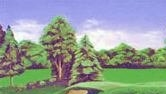 Golf Theme Bedroom Decorating Ideas Golf Home Decor